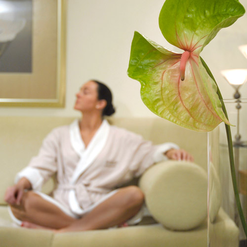 The Spa at White Oaks, Healthy Living and Travel, Ontario