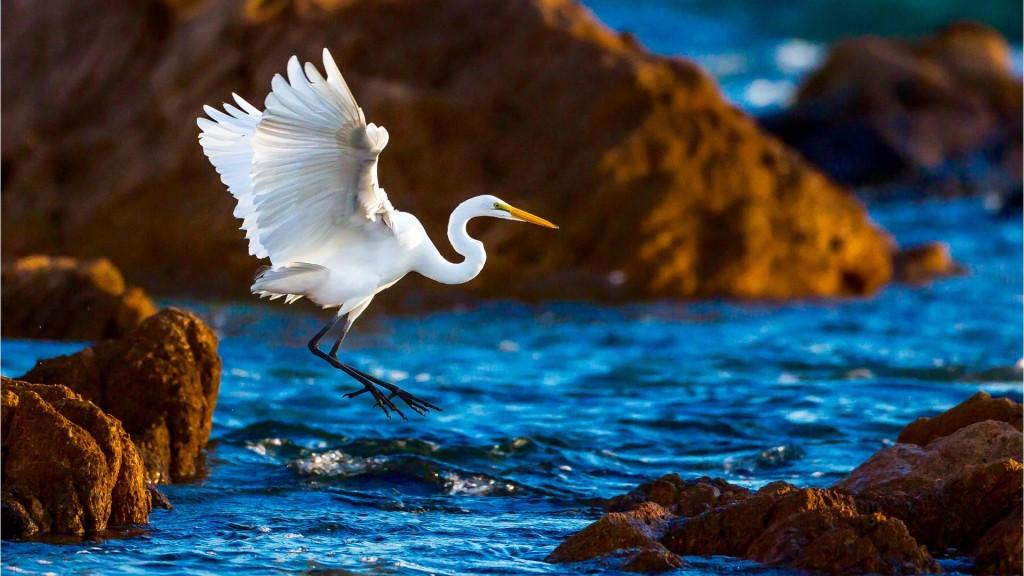Jasha Spa, JW Marriott Los Cabos Beach Resort, Los Cabos, Mexico | Healthy Living + Travel