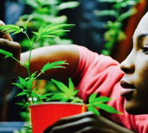 Cannabis, Woman, Juno CBD