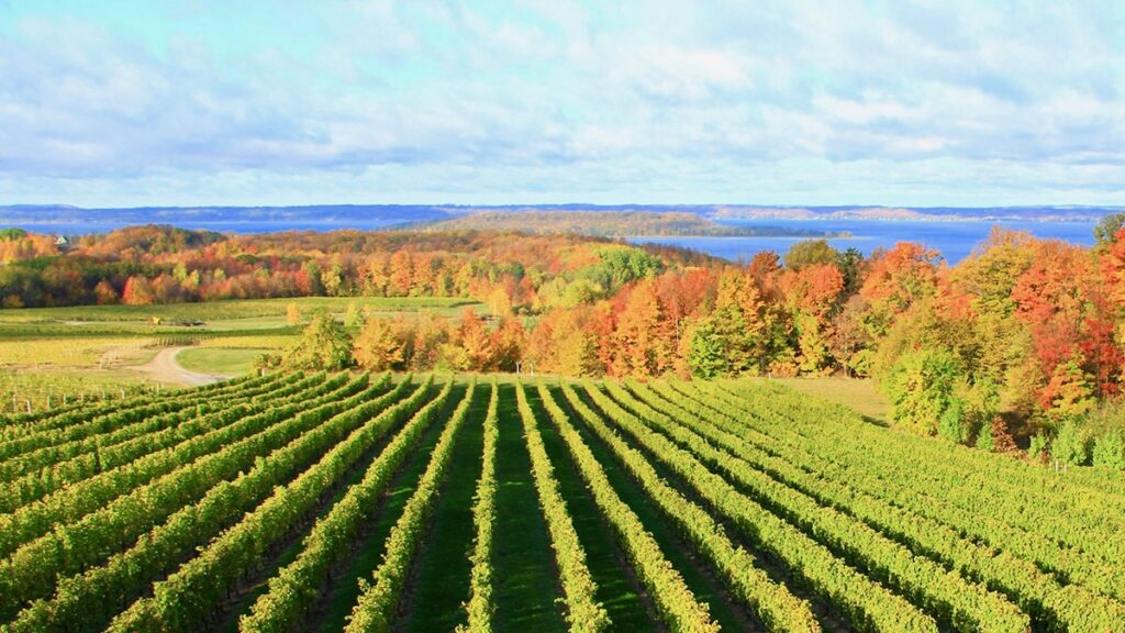 Chateau Grand Traverse, Healthy Living + Travel