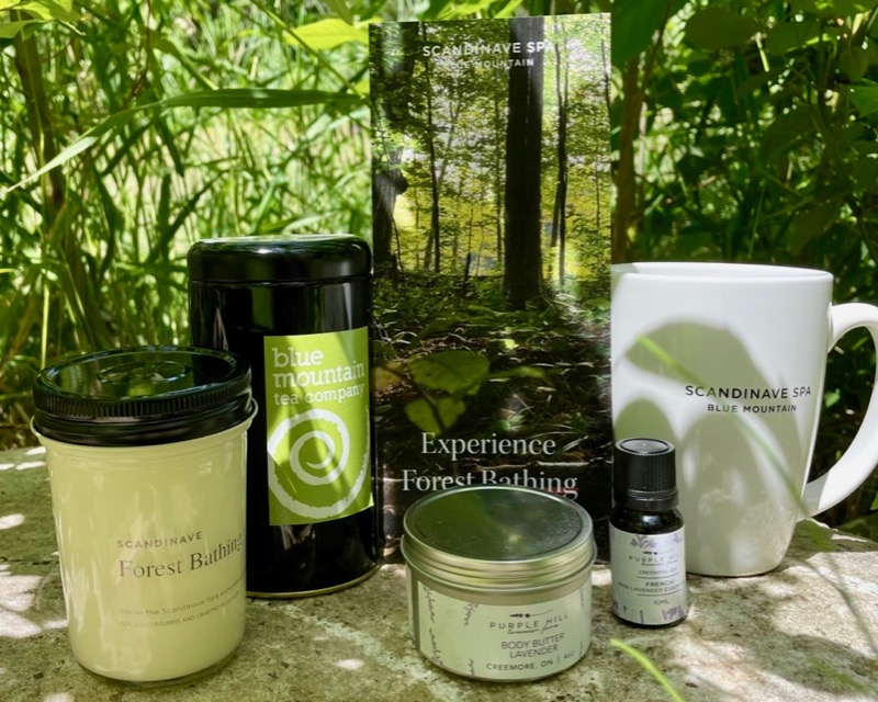 Discover Forest Bathing at Scandinave Spa Blue Mountain, Healthy Living + Travel