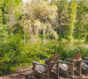 Forest Bathing at Scandinave Spa Blue Mountain, Healthy Living + Travel
